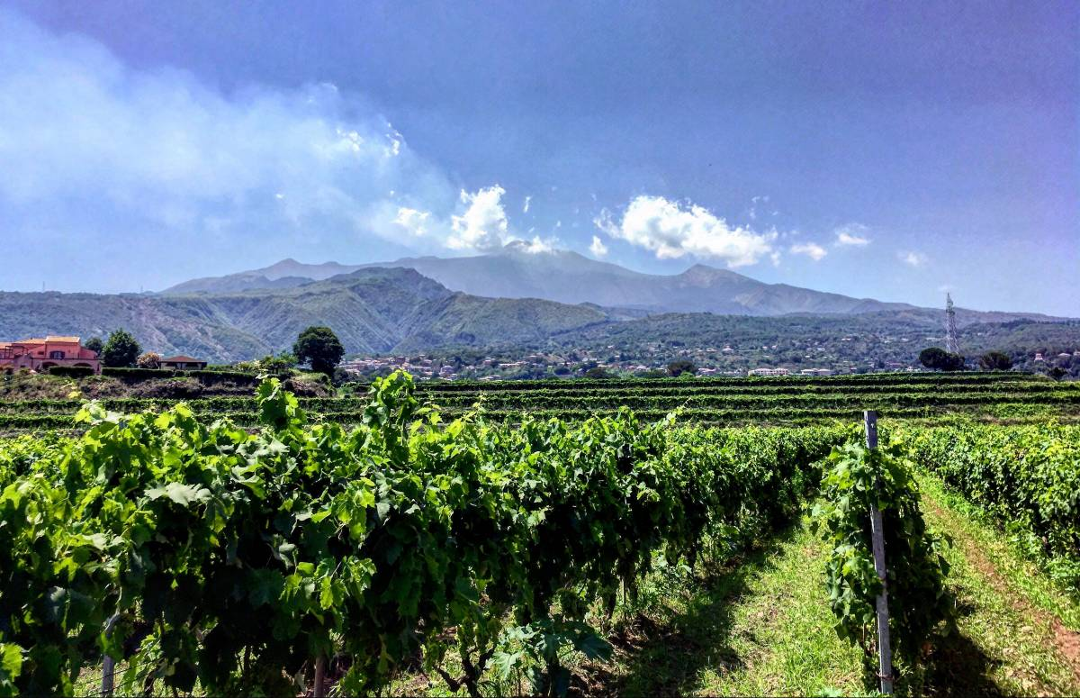 Touring Mount Etna